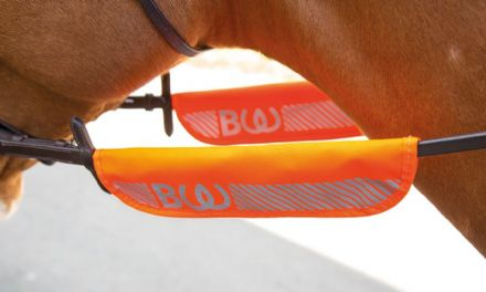 Bridleway Visibility Bridle Halter Bands Orange